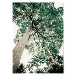 패브릭 포스터 F183 벽에거는천 나무 ver.1 [중형]