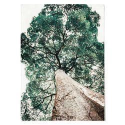 패브릭 포스터 F184 모던 식물 나무 ver.2 [중형]