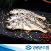 영광군수협 영광 보리굴비 선물세트 450g내외 (10미)