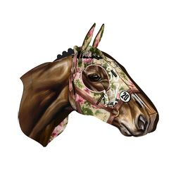 Cavallo Miniature