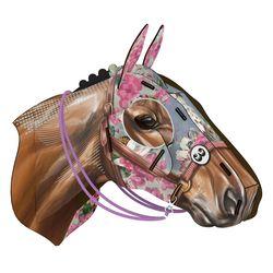 Cavallo Horse