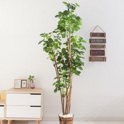 파비안 190cm 7-2 FREOFT(조화나무)