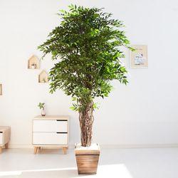 스밀락스 180cm 2-5 FREOFT(조화나무)