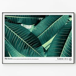 메탈 식물 나뭇잎 액자 Green leaves A [초대형]