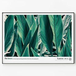 메탈 식물 포스터 액자 Green leaves C [대형]
