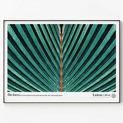 메탈 식물 포스터 액자 Green leaves D [대형]