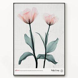 메탈 식물 꽃 포스터 액자 엑스레이 플라워 A [대형]