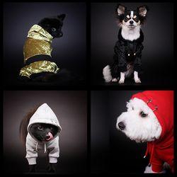 재미펫 피어싱후드 스웨그올인원 강아지옷