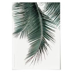 패브릭 천 포스터 F192 식물 나뭇잎 E [중형]