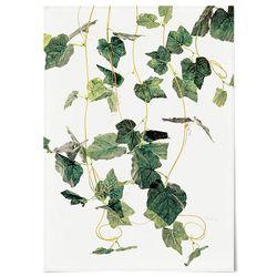 패브릭 포스터 F193 보타니컬 식물 그린 넝쿨 [중형]