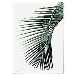 패브릭 포스터 F196 벽에거는천 나뭇잎 G [중형]