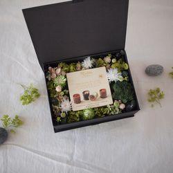 포레스트 그린 프리저브드 플라워 박스 - ONLY BOX
