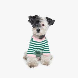 70s Stripe T-shirt (Green)