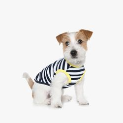 70s Stripe Sleeveless T-Shirt (Navy)