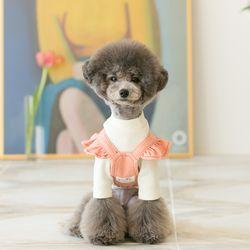 Angel suspender skirt (pink)