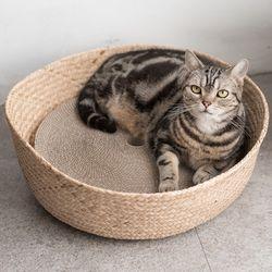고양이도넛 NEW도넛바구니 x 스크래쳐 리필 S 3개