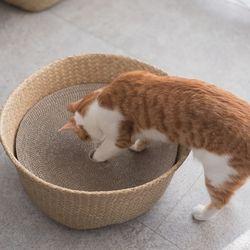 고양이도넛 도넛바구니 x 스크래쳐 리필 S 사이즈 3개