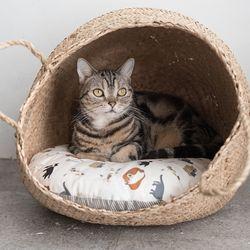고양이도넛 NEW도넛바구니 고양이하우스