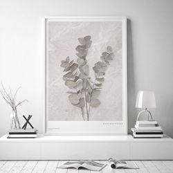 대리석 유칼립투스 거실 식물 인테리어 액자 [A3중형]