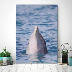 돌고래의 봄 - 홈데코 폼보드액자(A3)