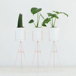 화이트링클 공기정화식물+화분스탠드