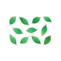 블랭코 스텐실도안518 나뭇잎 패턴(A5)