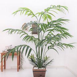 겐자야자트리 180cm 2-2 FREOFT(조화나무)