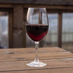 Spiegelau Festival Wine Glass 456ml 2p세트