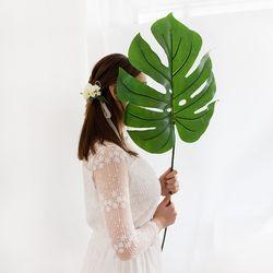 트로피컬 몬스테라 잎사귀 부케