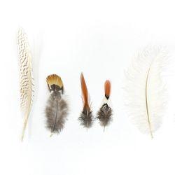 깃털장식 5종 대