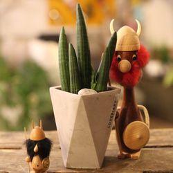 공기정화식물 Simple 스투키+폴리곤 미니시멘트화분