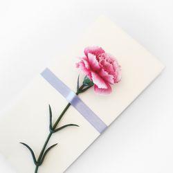 블루밍카네이션 리본꽃봉투 La Vien En Rose 감사봉투