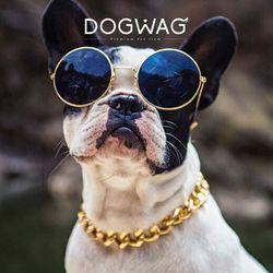 애완용 체인 금목걸이 강아지 금목걸이 불독