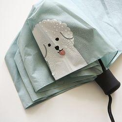 3단 우산 - 07 Bichon frise