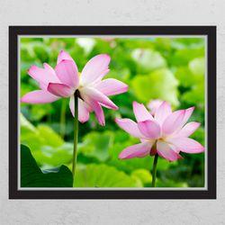 cc340-행운의연꽃창문그림액자