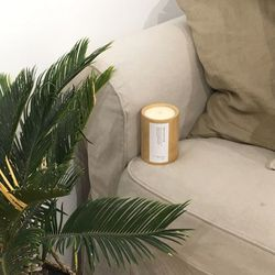 대나무 캔들