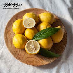 미국산 팬시 레몬 대과 10입