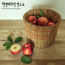 국내산 고당도 꿀사과 2.4kg(10-11입)