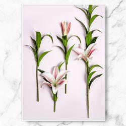 인테리어 식물 그림 릴리즈모 A4 수지 액자