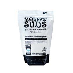 몰리스서즈 미국 EWG A등급 소다세탁세제 120회사용
