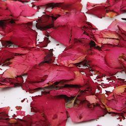 프로포즈 마른꽃잎(레드)