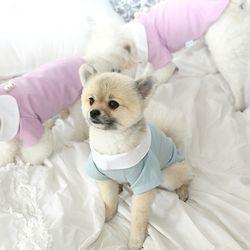 강아지 진주 카라 티셔츠 c2