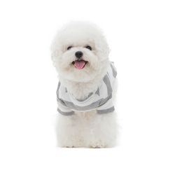 강아지 스트라이프 포켓티 c1