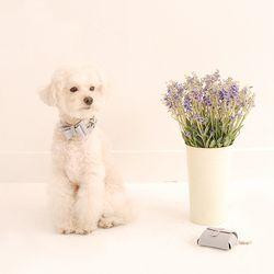 Solid Ribbon Collar M Greyish Blue
