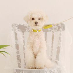Soft Pearl Collar M Yellow Green
