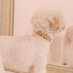 Solid Pearl Collar M Camel