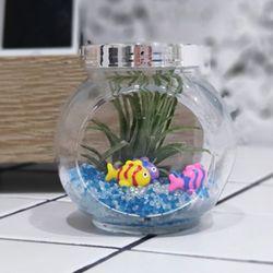 틸란 반원형 물고기 세트공기 정화피규어이오난사