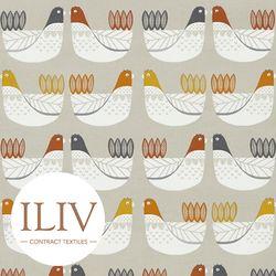 ILIV Cluck Cluck Fabric Tangerine 영국수입원단