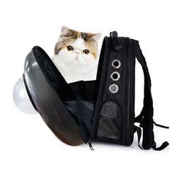 BIG 예펫 강아지 고양이 대형 우주선 가방 이동장