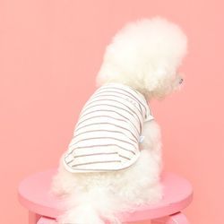 강아지 axx 멜란지 스트라이프 나시티셔츠 c2